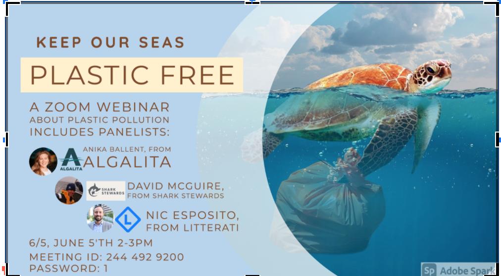 Plastic Free Event