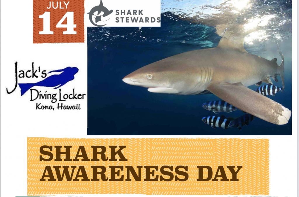 Shark Day